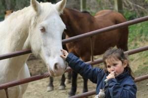 centre-equestre-val-sienne-enfant1