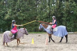centre-equestre-val-sienne-jeux-enfants